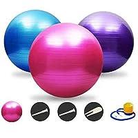 HYSUNG バランスボール ヨガボール アンチバースト仕様 55cm/65cm/75cm ダイエット エクササイズ 空気入れ フットポンプ付き