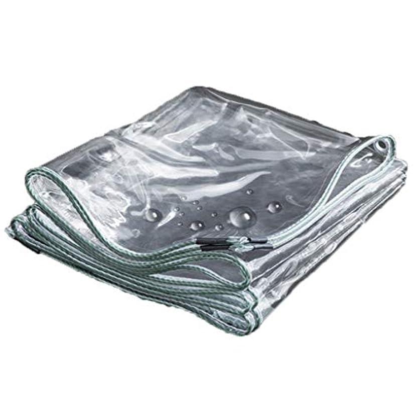 経験的ペルソナチケット樹脂ポリ塩化ビニールの防水シートのナイフのこする布の強い防水日焼け止めポンチョの家族の外のキャンプ場のスポーツのハイキングのテントの防水布の厚さ0.3 mm透明