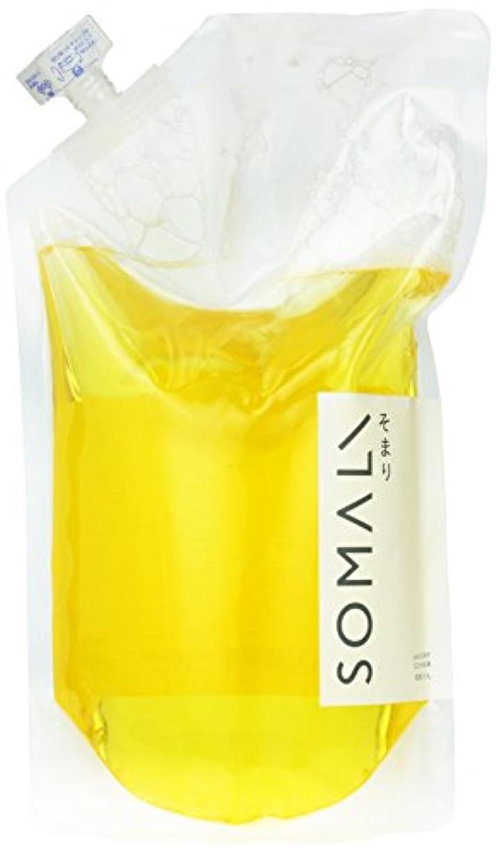を除くボランティア論文ソマリ(SOMALI) 洗濯用液体石けん(詰替用) 1L