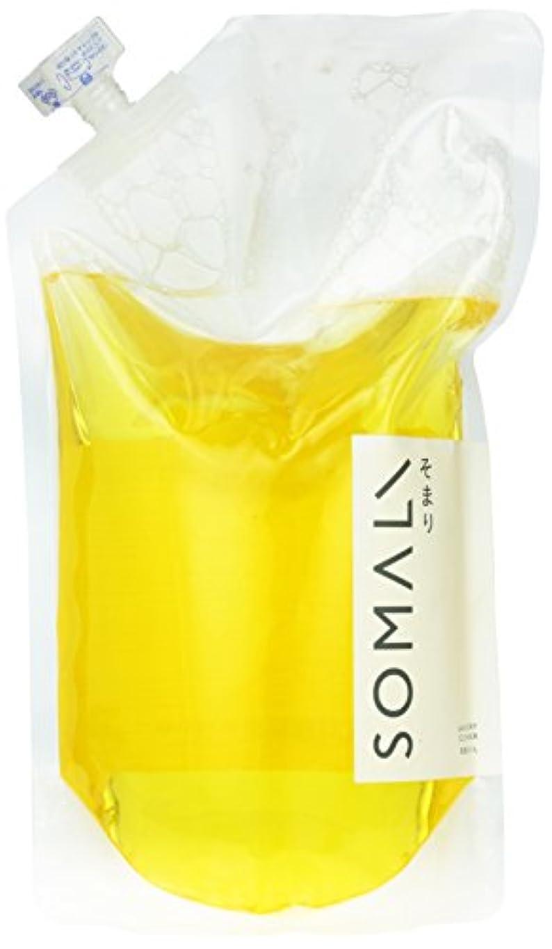 曇ったマイクロプロセッサ暖かさソマリ(SOMALI) 洗濯用液体石けん(詰替用) 1L