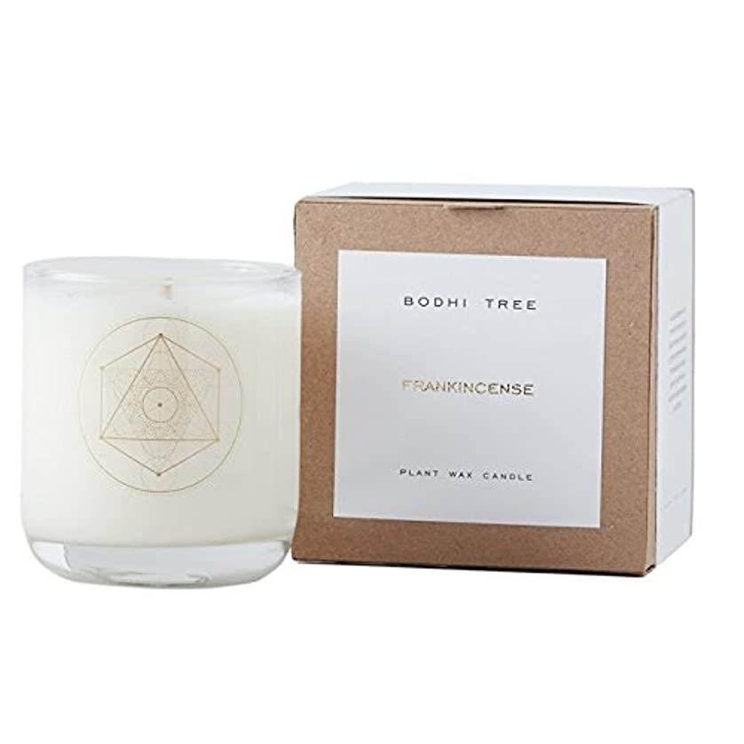 お肉画家小切手BodhiツリーFrankincense Scented Candle Full Size Candle