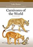 Carnivores of the World (Princeton Field Guides) 画像