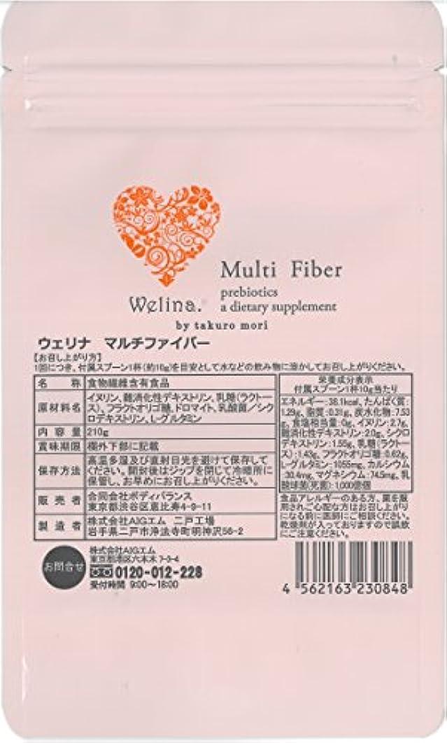 彫刻精度醸造所ウェリナ マルチファイバー