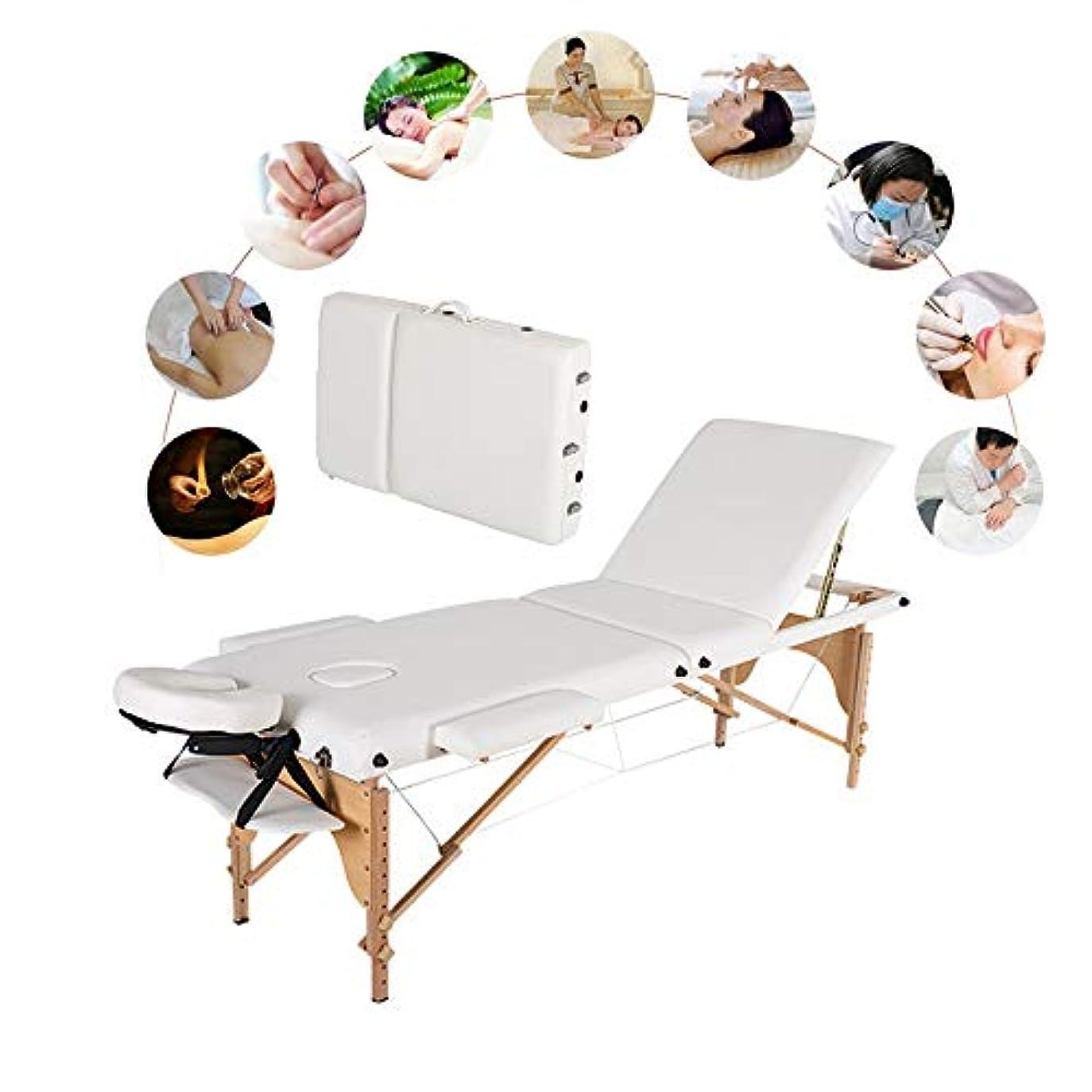 吸う演じる自分のために背もたれ付きプロフェッショナルポータブルマッサージテーブル - キャリーケース付き3フォールドマッサージ表Heigh調整PUポータブルサロンベッド