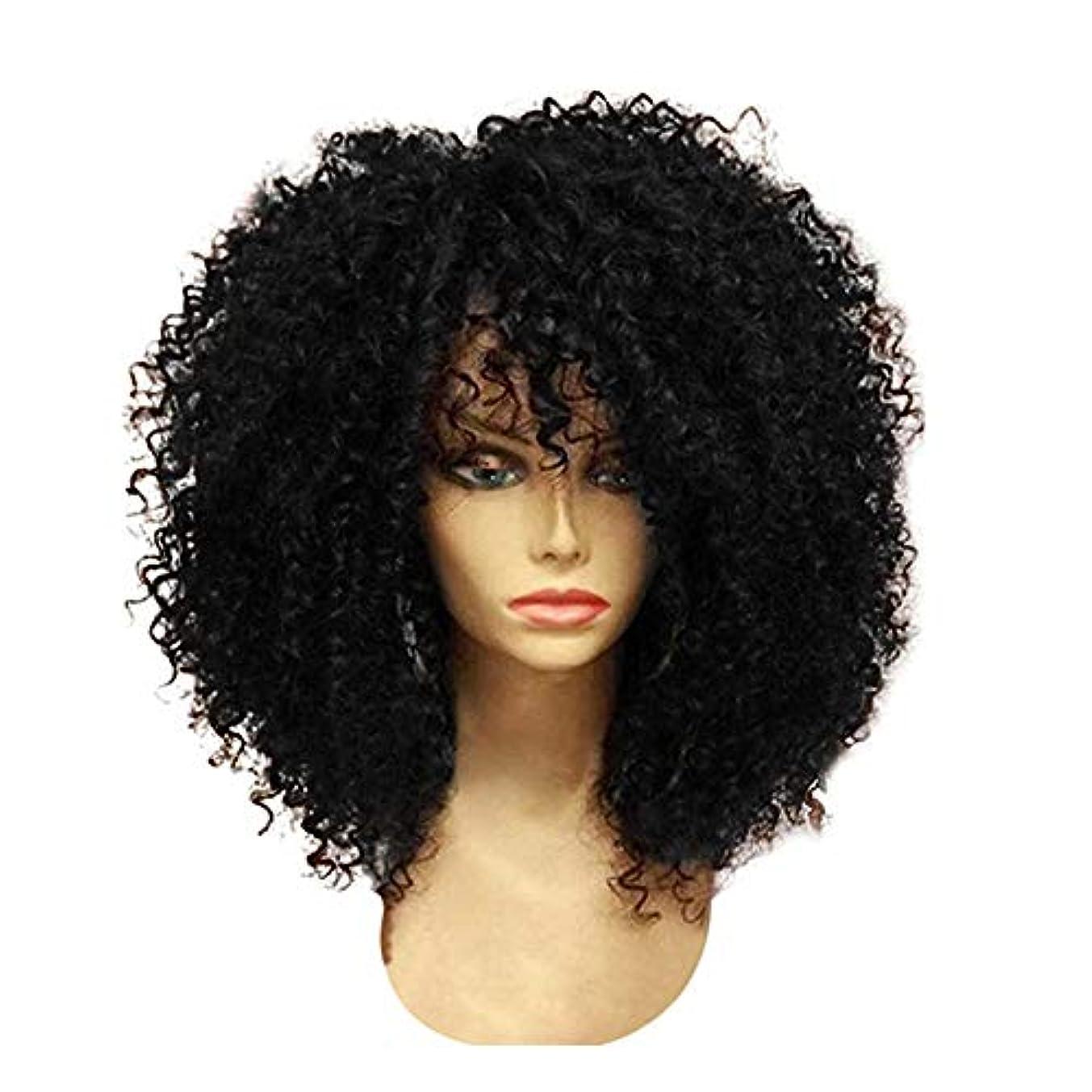 文明化合唱団ジョガーYOUQIU 前髪ウィッグ合成ブラックとブラウンかつらと女性ショートのクイック織り合成カーリーウィッグ (色 : 黒, サイズ : 15.7