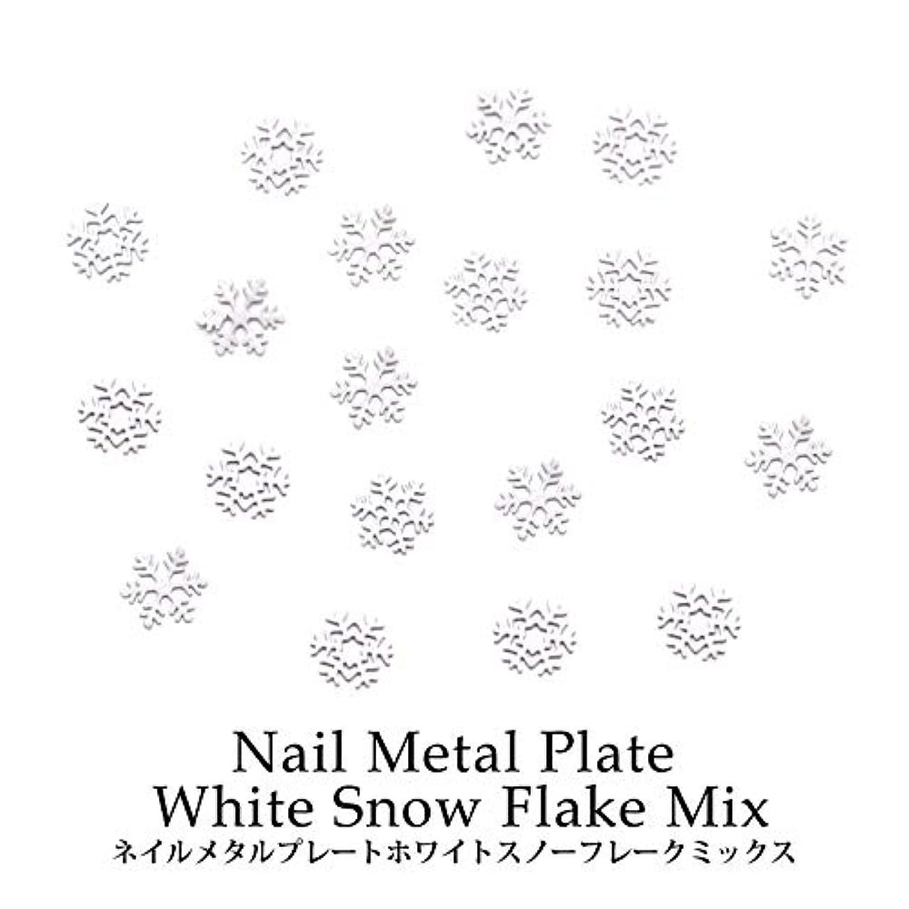 連邦料理をする恐ろしいですネイル メタルプレート ホワイトスノーフレーク ミックス 約0.5g ケース入り