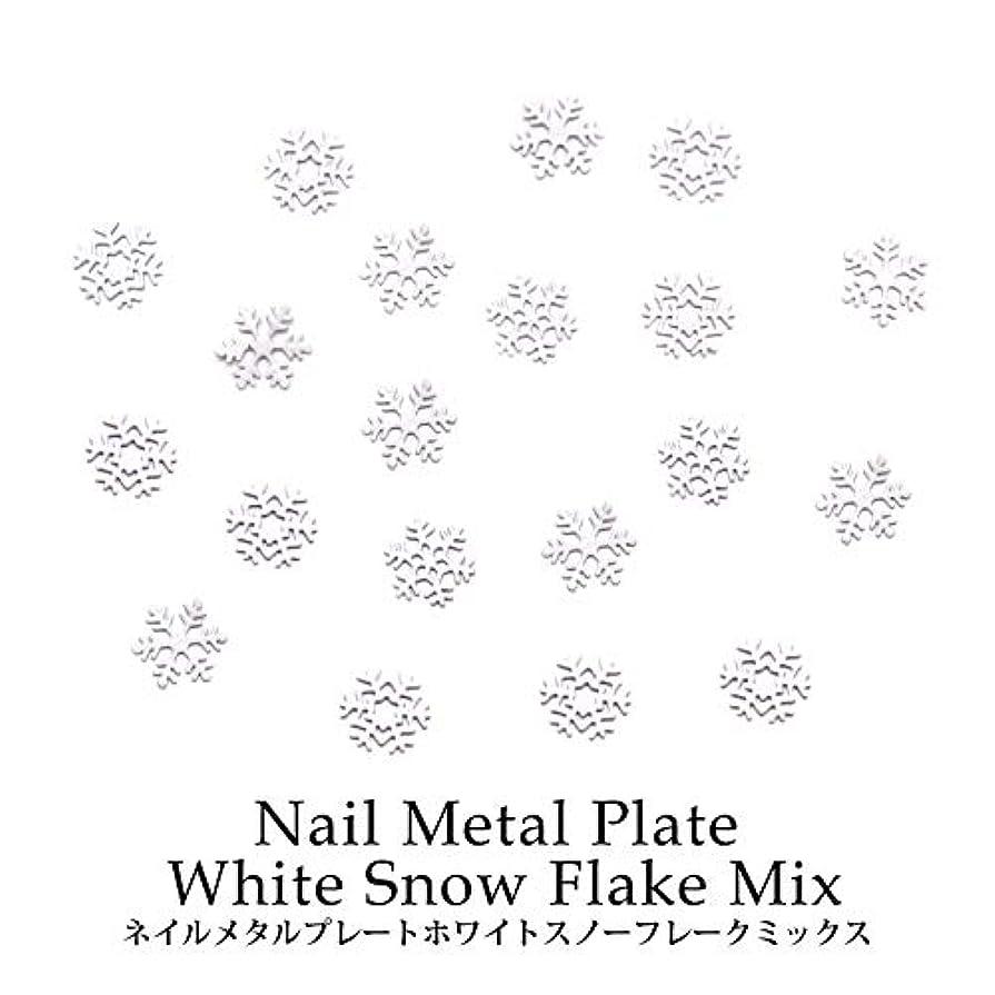 フローティングキャンバス食欲ネイル メタルプレート ホワイトスノーフレーク ミックス 約0.5g ケース入り
