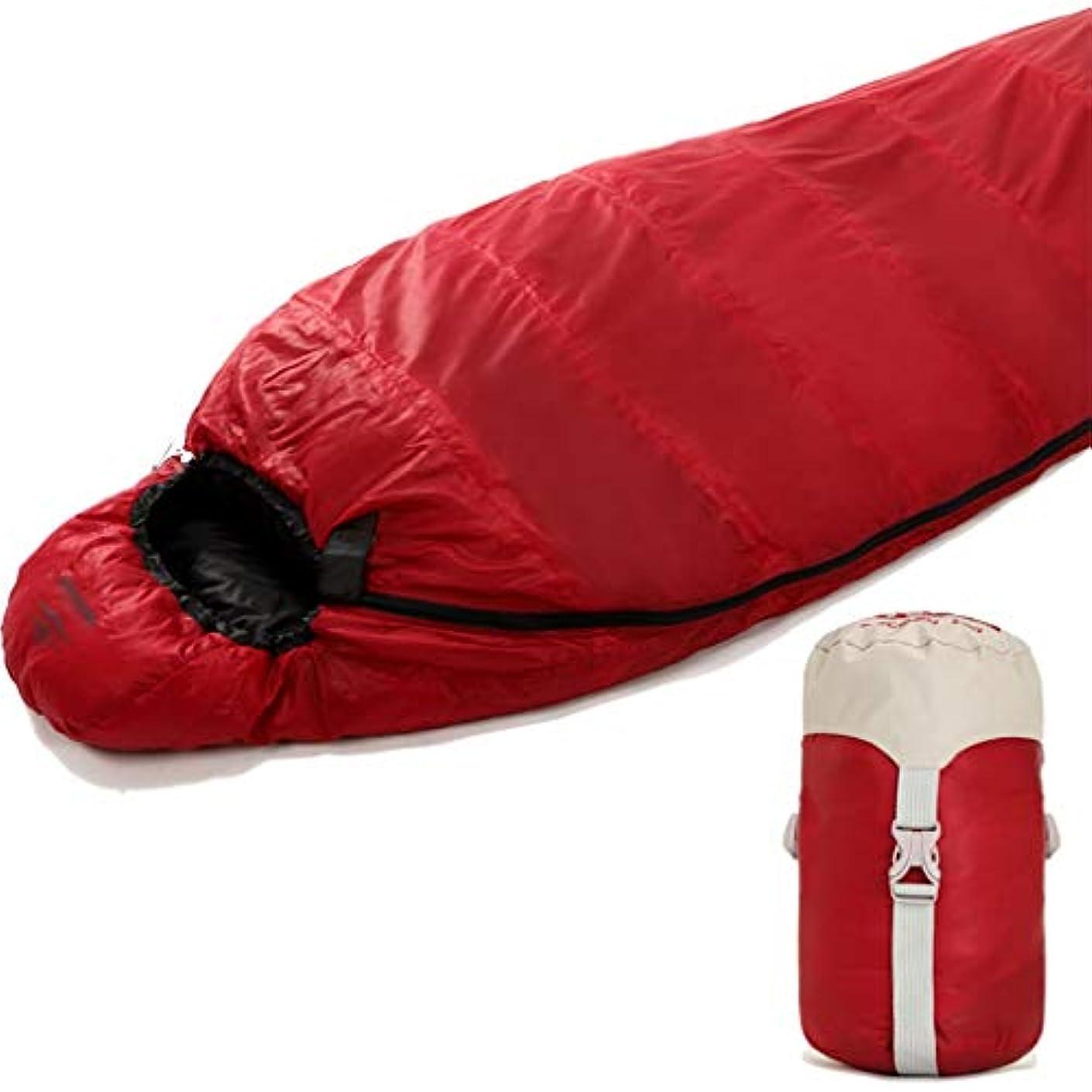 安息染色劇場YLIAN 寝袋 大人通気性軽量0度寝袋ダックダウン200GSM防水寝袋バックパッキング暖かいキャンプバッグ家族旅行アウトドアハイキング (Color : Red)