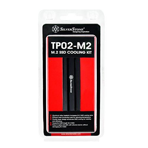 SilverStone『SST-TP02-M2』