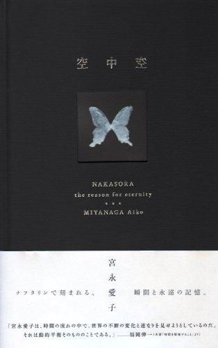 宮永愛子作品集 空中空(なかそら)の詳細を見る