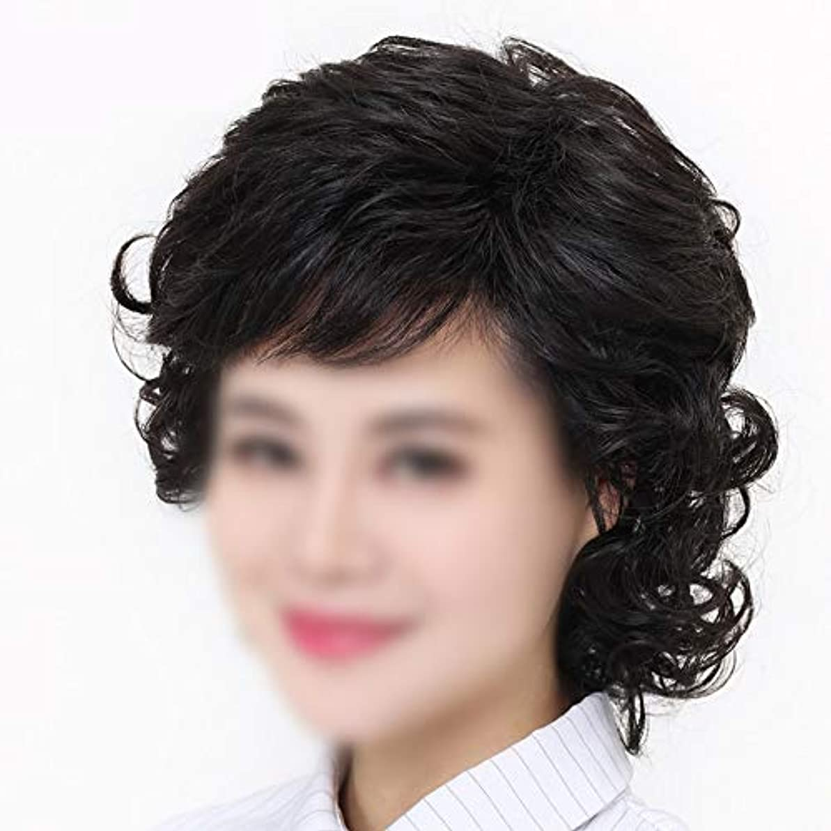 書道ビバ大理石YOUQIU 女性の中年ウィッグ母の髪のかつらのために手織りショートヘアレアル髪ダークブラウンウィッグ (色 : Dark brown, サイズ : Mechanism)