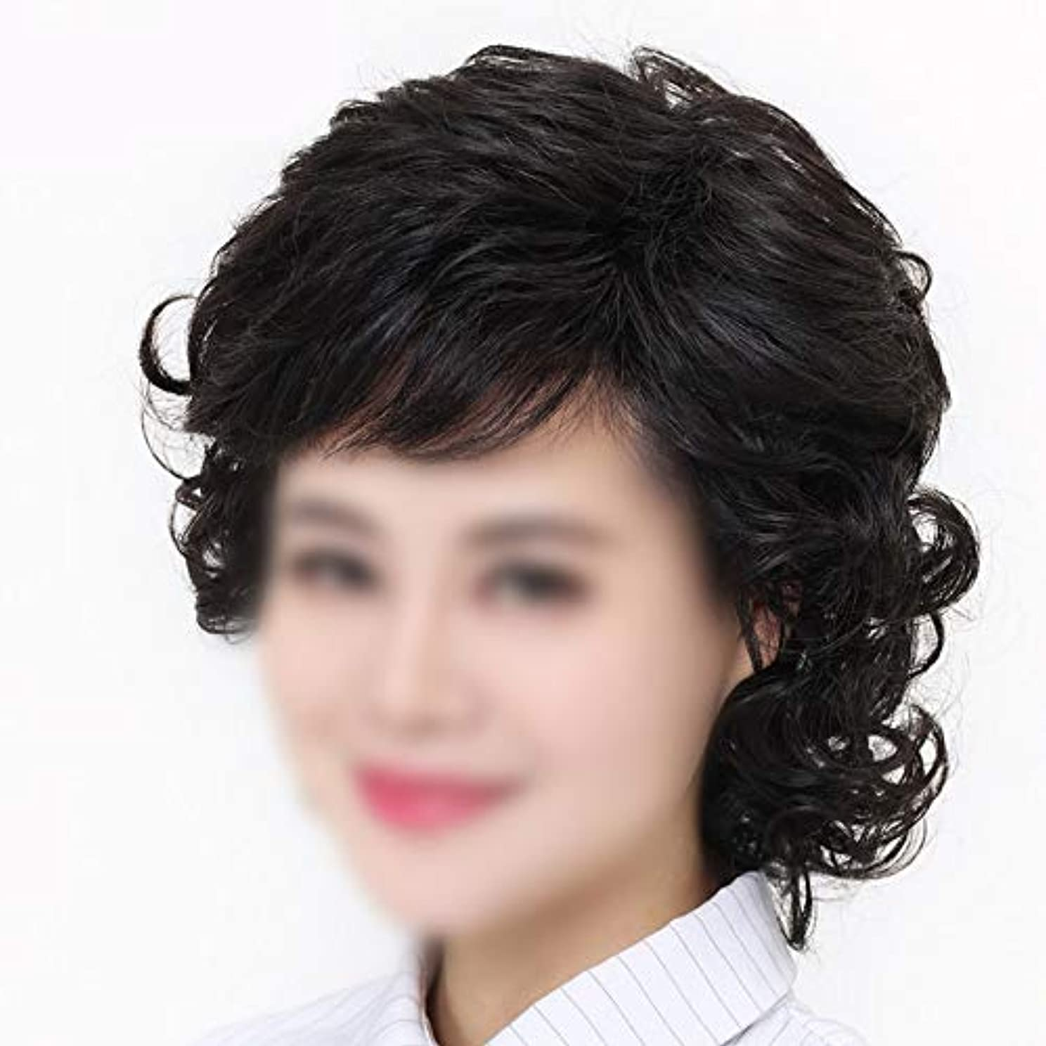王朝埋め込む不透明なYOUQIU 女性の中年ウィッグ母の髪のかつらのために手織りショートヘアレアル髪ダークブラウンウィッグ (色 : Dark brown, サイズ : Mechanism)