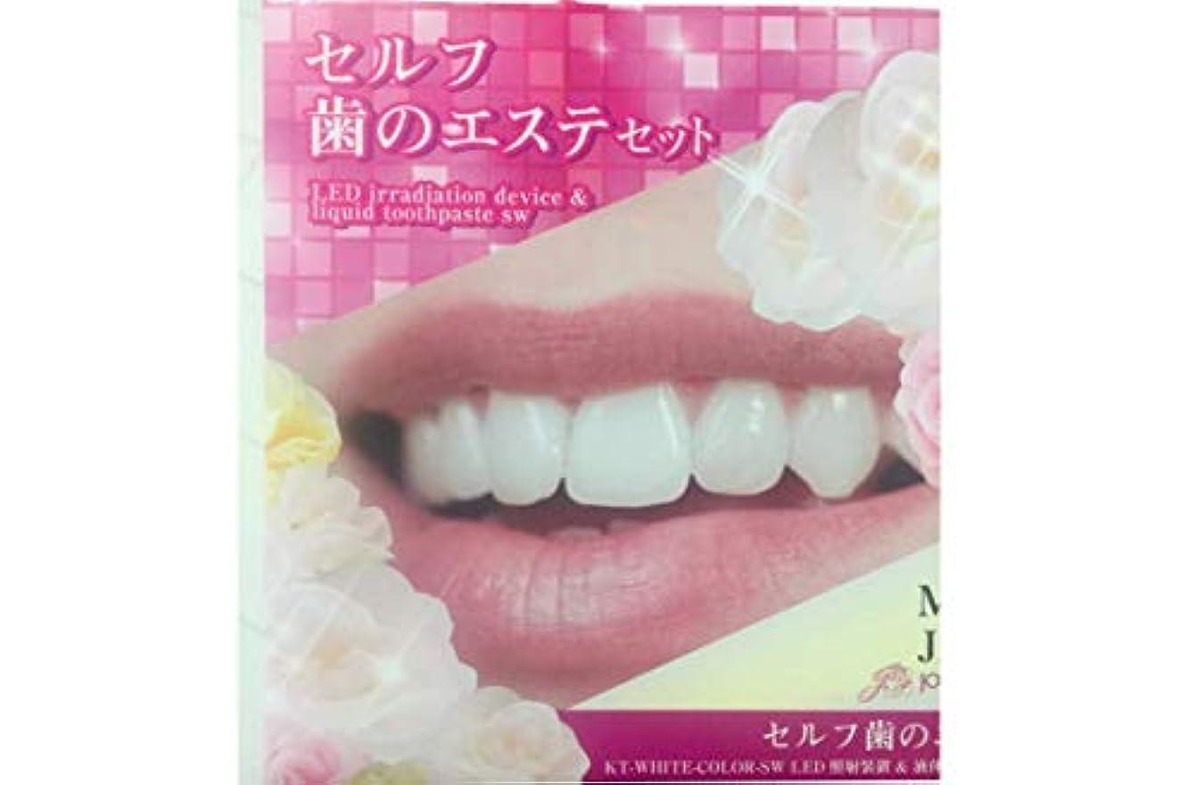 宗教びっくりした含めるセルフ歯のエステセット (SCTC) ホワイトニング セルフケア [専用ジェル付き] シリコンマウスピース