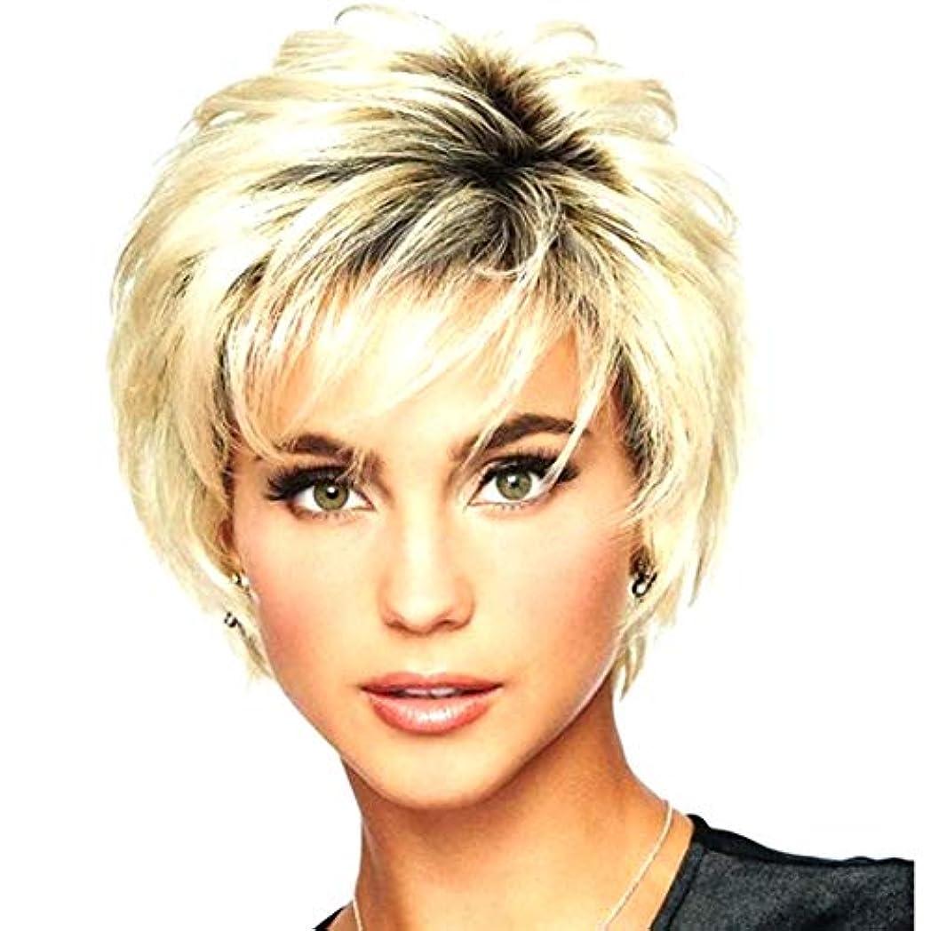 疑問に思う合法申請中Kerwinner レディースショートストレートヘアウィッグ高温シルクケミカルファイバーウィッグヘッドギア