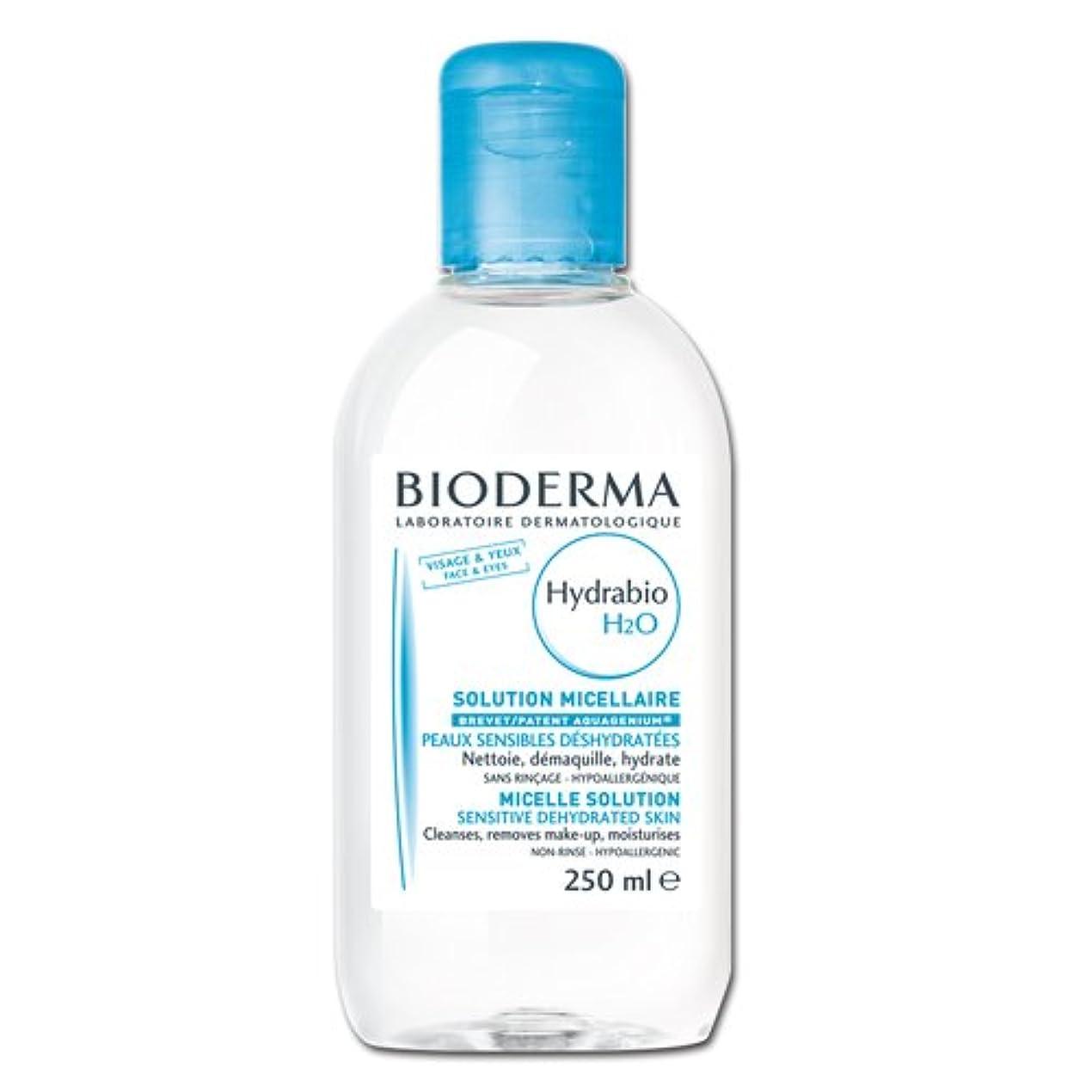 妻比べる過剰Bioderma ビオデルマ イドラビオ エイチツーオー D (H2O) 250ml [並行輸入品]