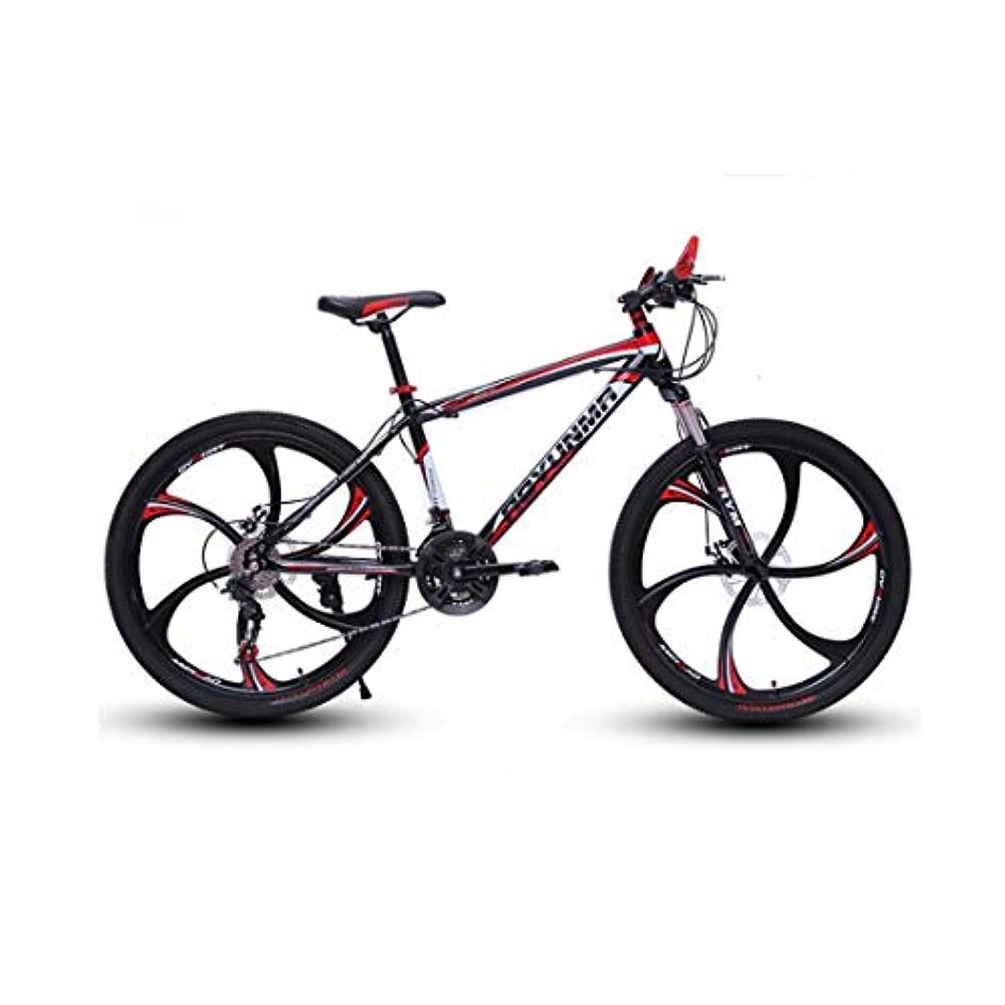 風邪をひくランタン世界26インチの大人のマウンテンバイク、ダブルディスクブレーキバイク、ビーチスノーモービル自転車、高炭素鋼のフレームをアップグレードし、アルミ合金ホイール