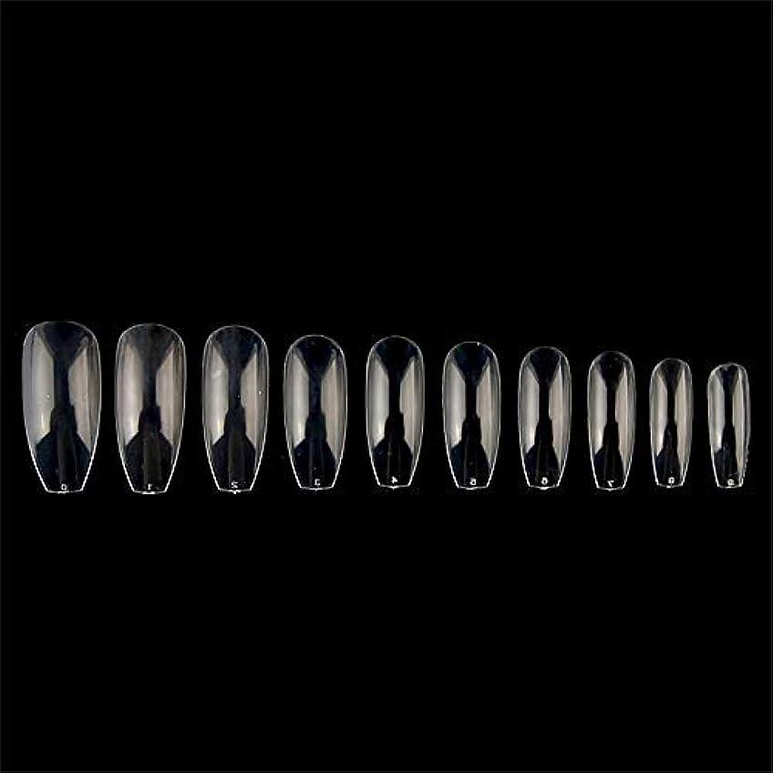 返還泳ぐ世代つけ爪 10サイズ ネイルチップ ロング オーバル ロング 付け爪 爪にピッタリ 卵形 練習用 透明