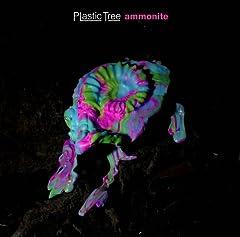 Plastic Tree「雪月花」のジャケット画像