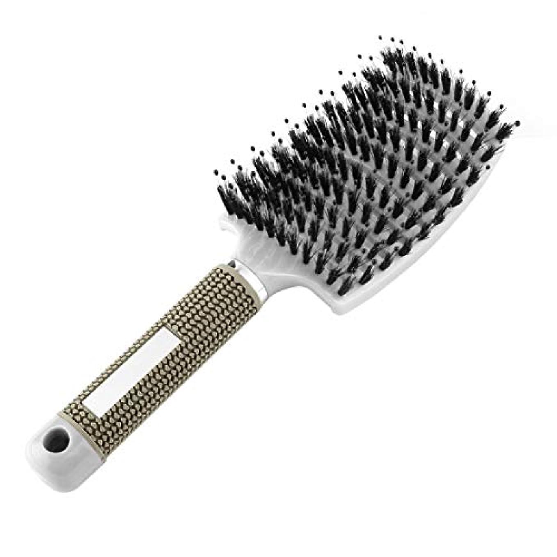 ほうきオークランド外部Intercorey女性の髪の頭皮マッサージくし剛毛&ナイロンヘアブラシウェットカーリーデタングルヘアブラシ用サロン理髪スタイリングツール