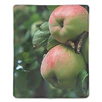 マウスパッド 耐久性 疲労低減 木りんごの朝