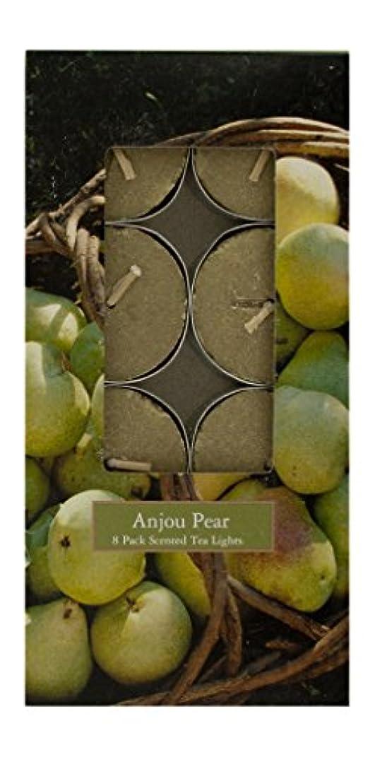 海嶺肺同種のMVP 87765 Anjou Pear 8 Pack Scented Tea Light Candles - 8 Packs