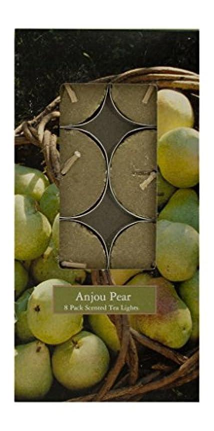 雨のより良いに対処するMVP 87765 Anjou Pear 8 Pack Scented Tea Light Candles - 8 Packs
