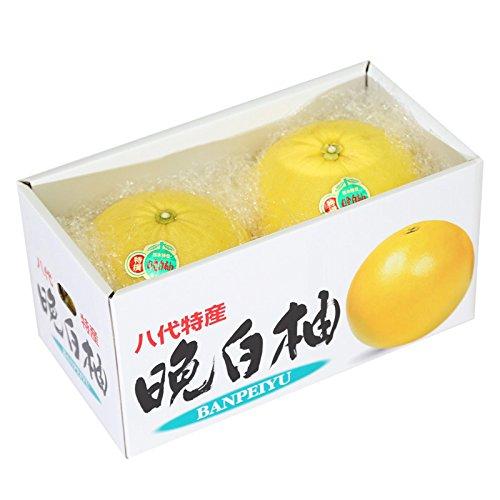 九州産 (熊本) 晩白柚 1ケース(2玉) ミカン箱 新鮮 産地直送