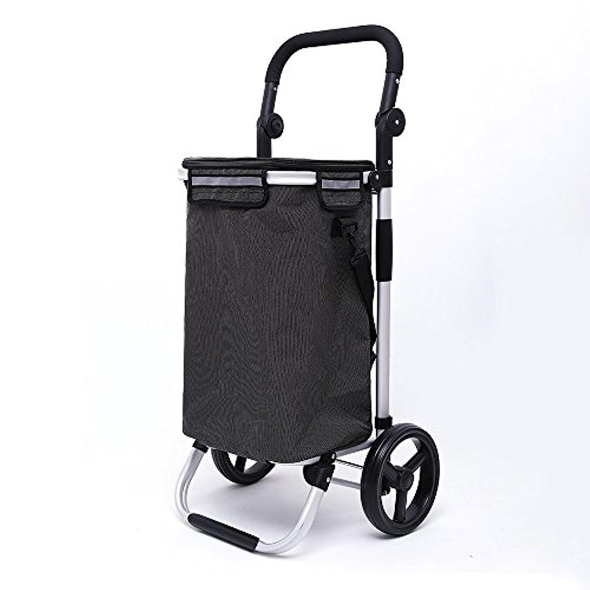 全国病者軽食JTWJ アルミショッピングカート8インチホイールフルカー折りたたみワイドフラット小型牽引カート(氷パック付き) (色 : A)
