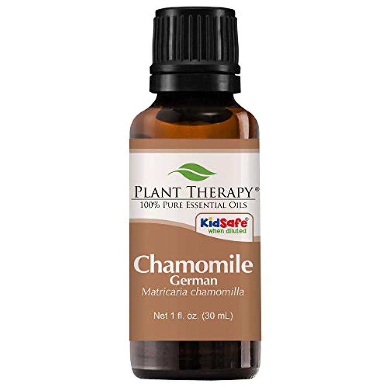 ガウン通り抜ける救急車Chamomile German Essential Oil 30 ml (1 oz) 100% Pure, Undiluted, Therapeutic Grade