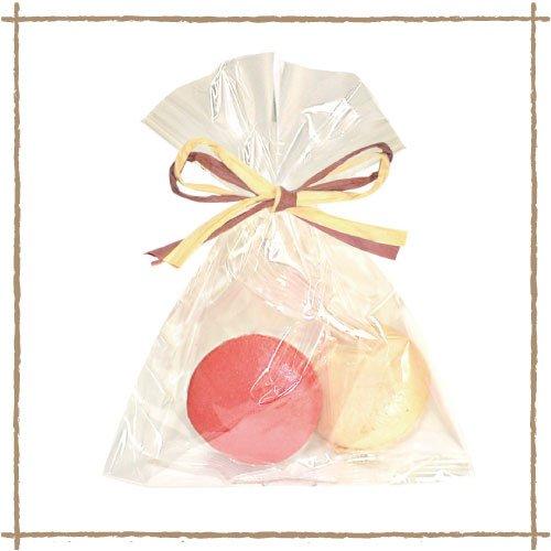 【冷凍】マカロンプチギフト(塩キャラメル×フランボワーズ)各1個(2個)