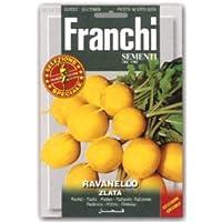 【種子】【FRANCHI社】【112/36】ゴールデンラディッシュ