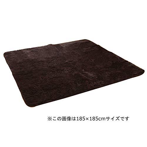 イケヒコ ラグ カーペット 2畳 無地 フィラメント 『フィリップ』 ブラウン 約185×185cm ホットカーペット対応