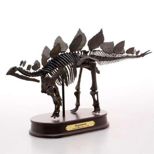 恐竜グッズ(骨格フィギュア)ステゴザウルス 最高峰 スケルトンモデル