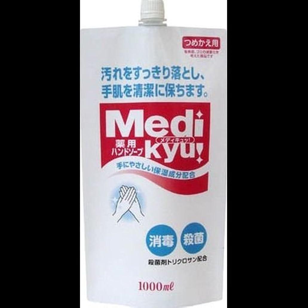 ペッカディロ櫛あえて【まとめ買い】薬用ハンドソープ メディキュッ 詰替用 1000ml ×2セット