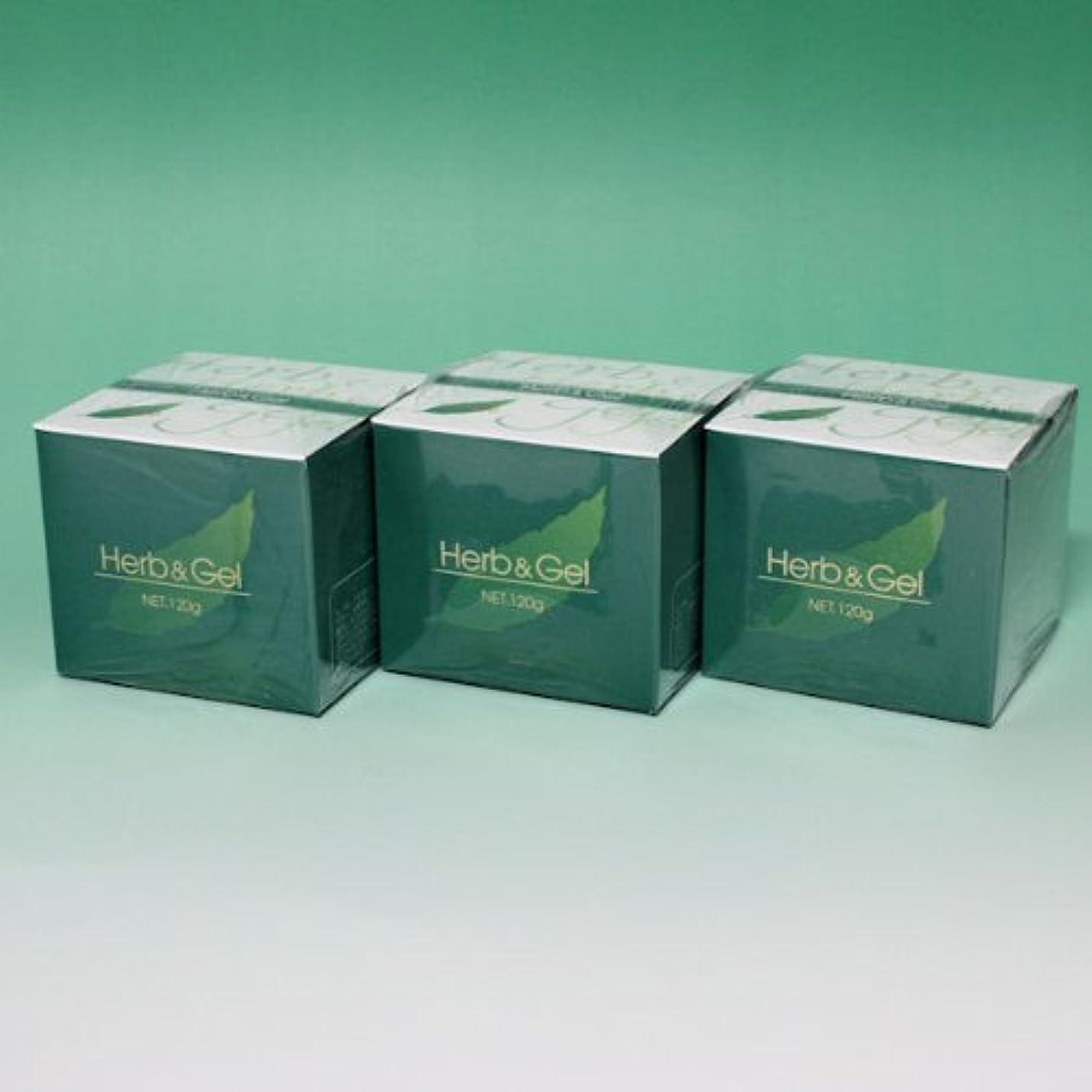 静的支払い後方ハーブアンドゲル 天然ハーブエキス配合 120g×3瓶セット (4580109490026)