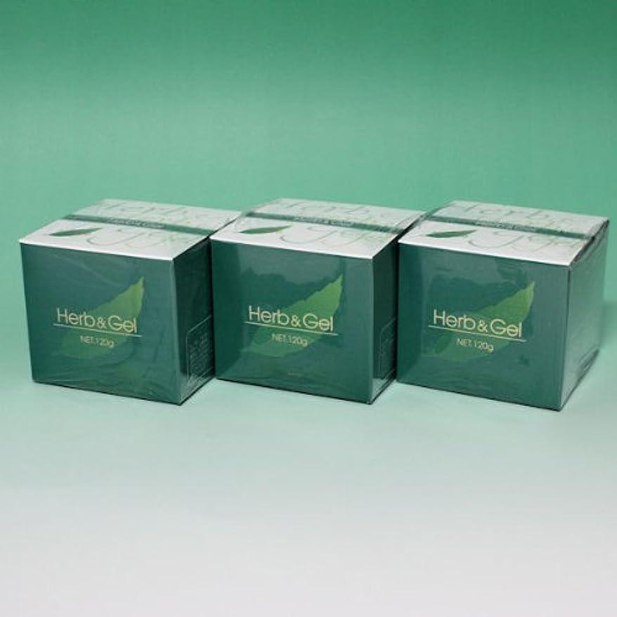 巡礼者耐えられない農学ハーブアンドゲル 天然ハーブエキス配合 120g×3瓶セット (4580109490026)