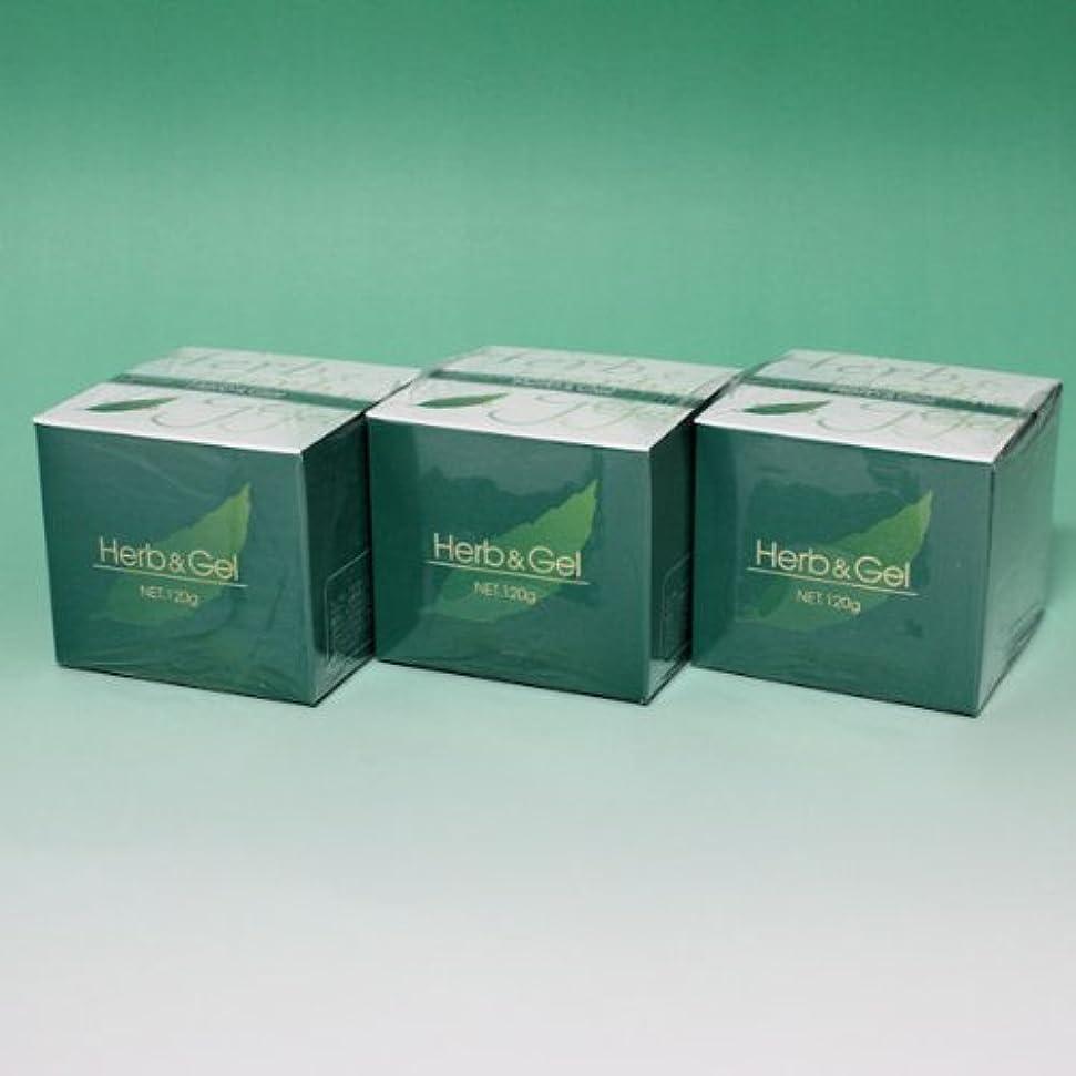 確立します胴体手段ハーブアンドゲル 天然ハーブエキス配合 120g×3瓶セット (4580109490026)