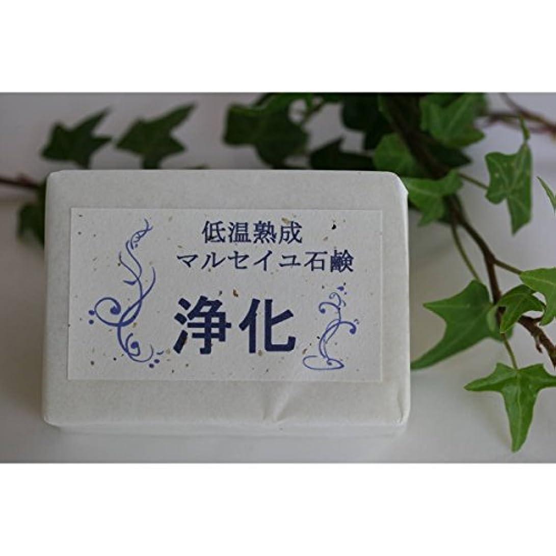 胚芽病院アークマウントフジ フラワーエッセンス 低温熟成 マルセイユ石鹸 浄化 (MTFUJI FLOWER ESSENCES)