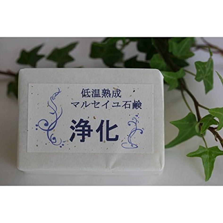 リア王代数的ラグマウントフジ フラワーエッセンス 低温熟成 マルセイユ石鹸 浄化 (MTFUJI FLOWER ESSENCES)