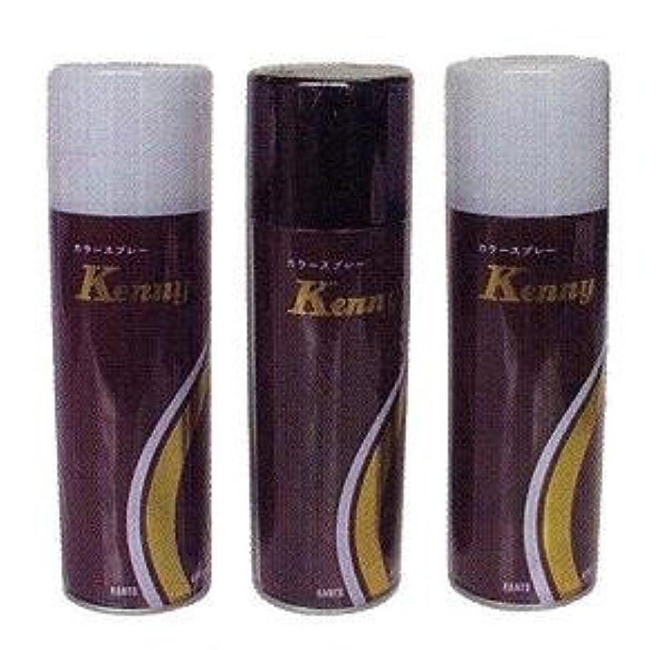 本会議耕す倒産ケニーカラースプレーL 125g 黒茶 (ダークブラウン)