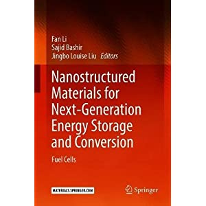 Nanostructured Materials for Next-Generation Energy Storage and Conversion: Fuel Cells