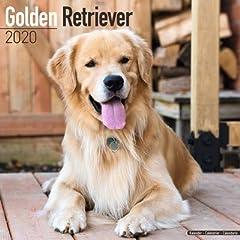 海外輸入版 2020年ドッグカレンダー ゴールデンレトリバー