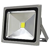 LED投光器 30W LED 昼光色
