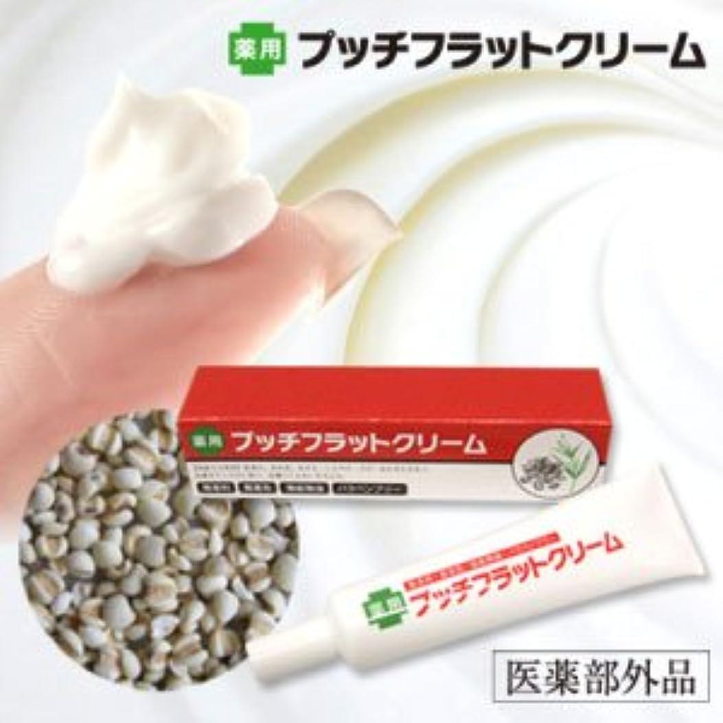 拘束する分泌する精巧な薬用プッチフラットクリーム(医薬部外品)