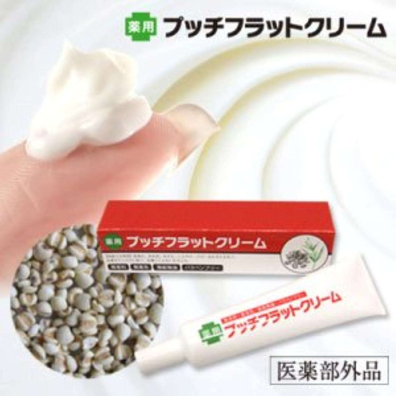 選挙解読するプット薬用プッチフラットクリーム(医薬部外品)