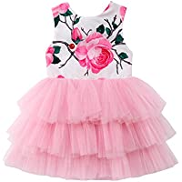 Hotwon Toddler Baby Girl Dress Clothes Floral Sleeveless Dress Rose Tops Lace Skirt Outfits Clothes