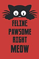 Feline Pawsome Right Meow: Blank Line Notebook Journal For All Cat Lovers