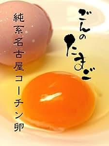 【起死回生の縁起鶏】 名古屋交趾鶏(コーチン)卵 / ごんのたまご 30個・化粧箱入り