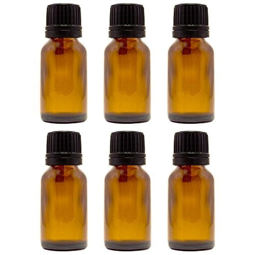 フェザー規制する永久に15 ml (1/2 fl oz) Amber Glass Bottle with Euro Dropper (6 Pack) [並行輸入品]