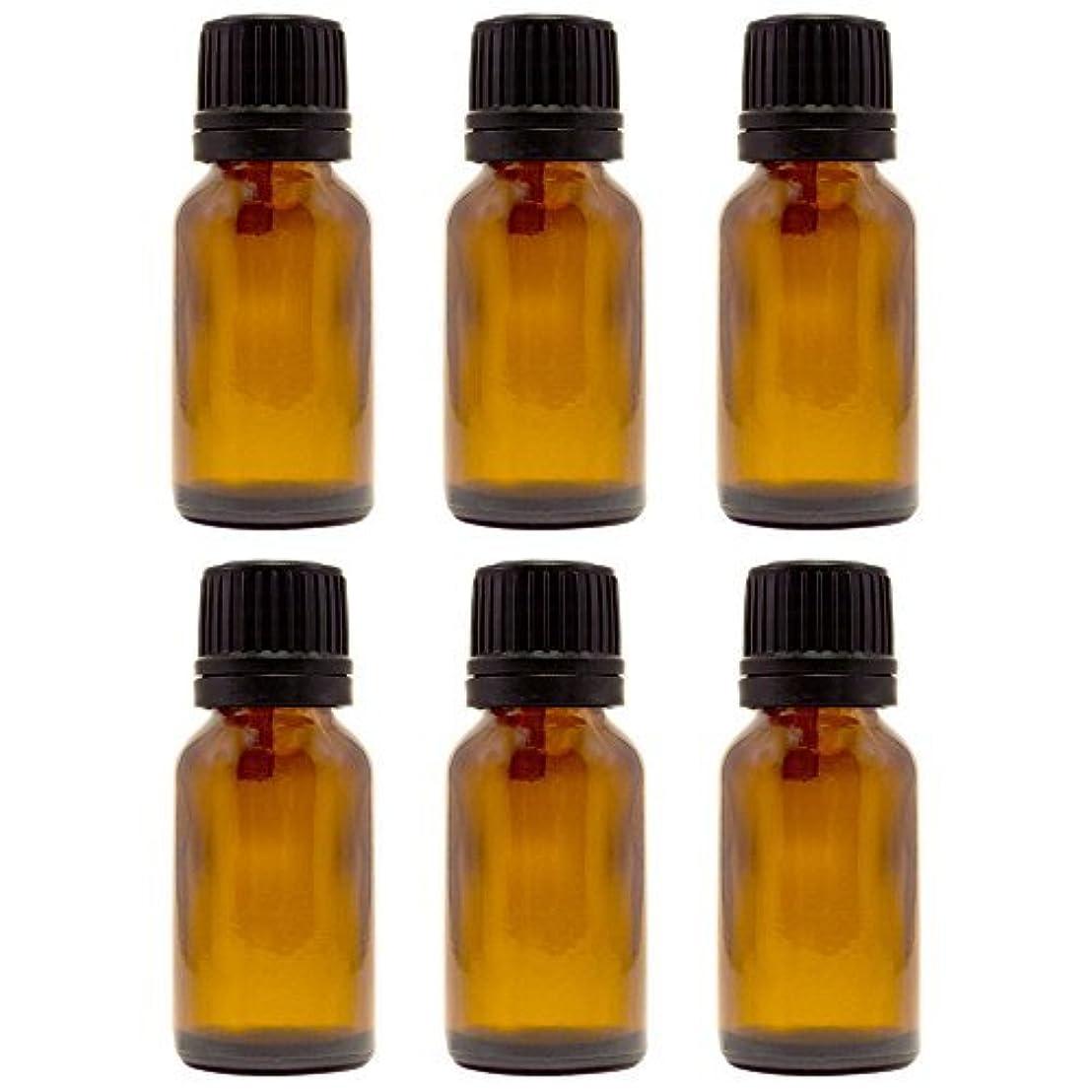 スリチンモイ送信する盲信15 ml (1/2 fl oz) Amber Glass Bottle with Euro Dropper (6 Pack) [並行輸入品]
